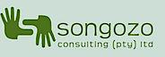 Songozo Consulting's Company logo