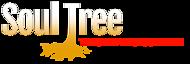 Soul Tree Transformations's Company logo