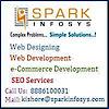 Spark Infosys's Company logo
