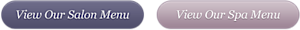 Specialeffectssalondayspa's Company logo