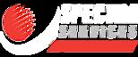 Spectra Services Inc's Company logo