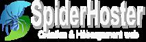 Spiderhoster's Company logo