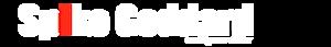 Spike Racing's Company logo