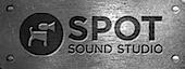 Spot Sound Studio's Company logo