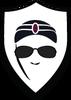 Spygenie's Company logo