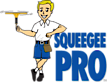 Squeegee Pro Window Cleaning's Company logo