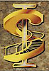 Standard Iron's Company logo