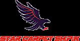 Star Carpet's Company logo