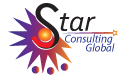 Star Consulting Global's Company logo