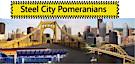 Steel City Pomeranians's Company logo