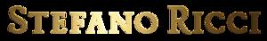 Stefano Ricci S's Company logo