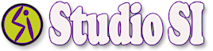 Thestudiosi's Company logo
