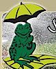 Summers Irrigation's Company logo