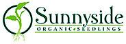Organic's Company logo