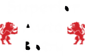 Superior Auto Body Of Collierville's Company logo