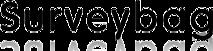 Surveybag's Company logo
