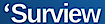 A/R Management Group's Competitor - Surview logo