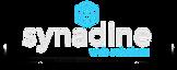 Synadine Hosting's Company logo