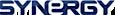Synergy WorldWide's company profile
