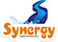 ProSlide Technology's Competitor - Synergywaterslides logo