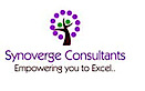 Synoverge Consultants's Company logo