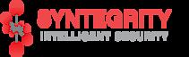 Syntegrity Networks's Company logo