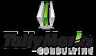 TallyMarks Consulting's Company logo