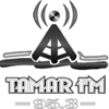 Tamar Fm 95.3's Company logo