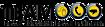 Team Networks Logo