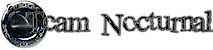 Team Nocturnal's Company logo