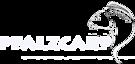 Team Pfalzcarp's Company logo