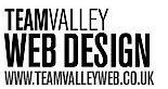 Team Valley Web's Company logo