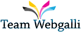 Team Webgalli's Company logo