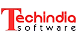 TechIndia Software's Company logo