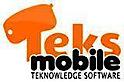 Teks, Co, IN's Company logo