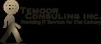 Temoor Consulting's Company logo