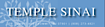 Aemt, Info's Competitor - Temple Sinai Of Summit logo