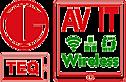Teqav's Company logo