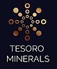 Tesoro Minerals's Company logo