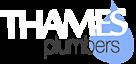 Thames Plumbers's Company logo