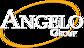 Augusta's Best Hotels's Competitor - Angelogroupinc logo