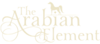 Arabianelement's Company logo