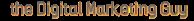 The Digital Marketing Guy's Company logo
