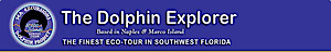 Dolphin Study's Company logo