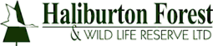 The Forest Festival's Company logo