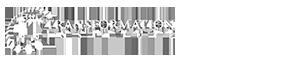 The It Transformation Institute's Company logo