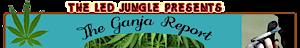 The Led Jungle's Company logo