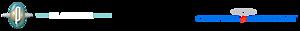 The Playdium Store's Company logo