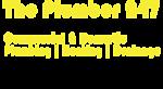 The Plumber 247's Company logo