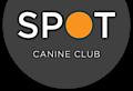 The Spot Experience's Company logo